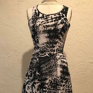 F21Black and White Graphic Printed Skater Dress